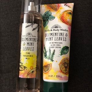 BNWT-Clementine and Mint Leaves Body Care set
